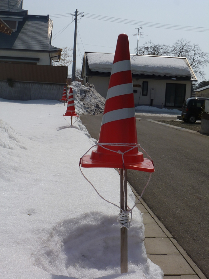 Keeping the cones above snow level.  Photo and permission Su Grierson