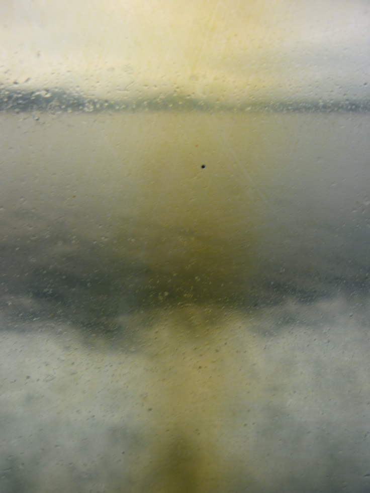 View out of Clyde ferry, 2011, Photo Chris Fremantle