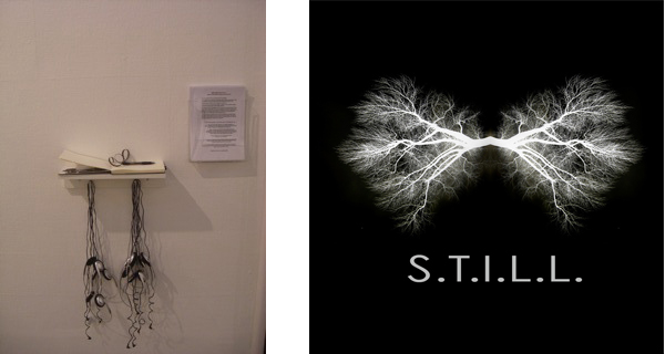 Samantha Clark: S.T.I.L.L. : A project for Gentle Actions: Art Ecology Actions Kunstnernes Hus, Oslo, Norway Oct/Nov 2010