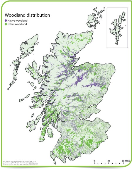 Woodland Cover in Scotland from http://www.environment.scotland.gov.uk/get-informed/land/woodlands-and-forests/