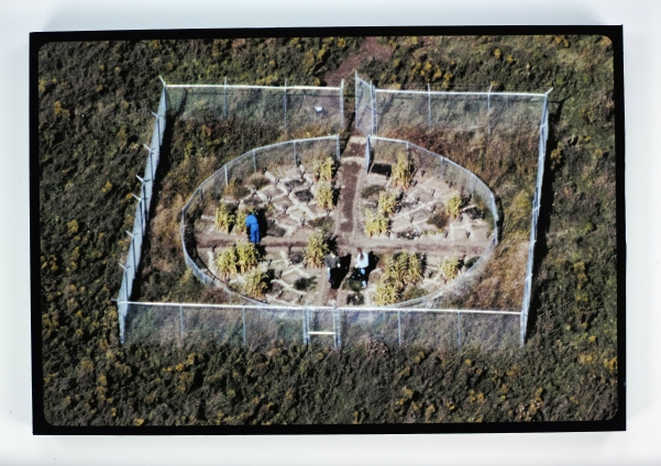 3.b.RF_aerialview.jpg