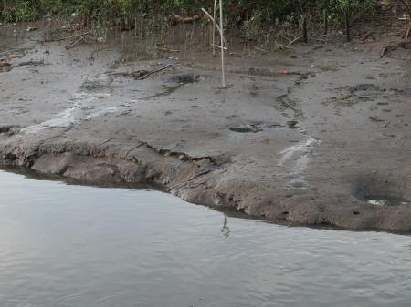 CH riverbank